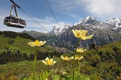 Gimmelwald, Switzerland-