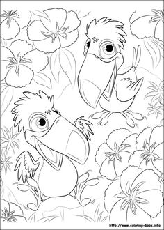 31 Rio printable coloring pages for kids. Find on coloring-book thousands of coloring pages. Online Coloring Pages, Disney Coloring Pages, Coloring Pages To Print, Coloring Book Pages, Printable Coloring Pages, Coloring Pages For Kids, Coloring Sheets, Rio Movie, Disney Colors
