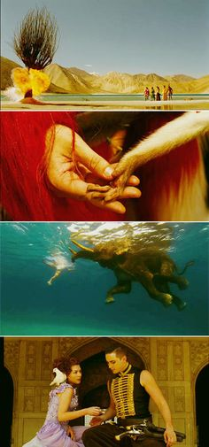 """Cinematography in the film """"The Fall"""" examples from a few scenes of how vibrant the color is throughout the film."""