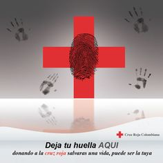 Proyecto campaña cruz roja 2011