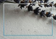 Papel artesano hecho a mano de semillas (vintage) - Blanc & Blue Design