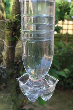 recycled bird feeder water bottle