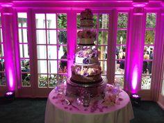 Uplighting and Pin spotting Cake