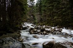 Forest river - Small waterfall in a forest river with silky water around the rocks in the stream