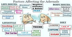 Adrenal fatigue is a commonly experienced syndrome in today's world of stress and high energy. Adrenal fatigue symptoms are often confused for other health ...