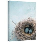 Found it at Wayfair - Art Wall Elena Ray 'Blue Nest' Gallery-Wrapped Canvas Wall Art