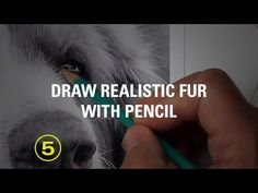 Can you really draw every unique fur type with just a pencil? - YouTube
