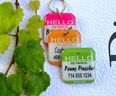 So Cute! Pet ID Tags.