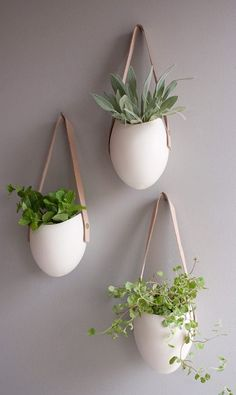 #Hanging #Planters - Great for #Herbs #Air #Plants #Cactus & #Succulents