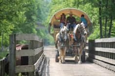 Head to Wellsboro and the Pennsylvania Grand Canyon where you will step back in time with a covered wagon ride from Ole Covered Wagon Tours. This tour takes visitors to various sites along the Pine Creek Rail Trail, such as Little Four Mile Run Waterfalls at the bottom of the Turkey Path.