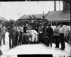 A group of men are lined up around a bursting cotton bale that is being weighed. All of the men look directly at the camera. They are all wearing hats and several of them hold tools in their hands. Buildings in the background. Loyola University New Orleans, Louisiana State University, Louisiana History, Louisiana Tech, Oral History, Teaching History, Coding Languages, Types Of Resources, History Museum