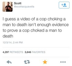 well, a video by itself is evidence of very little, and with good reason -- cops are thugs