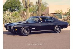 Muscle Car Dreaming