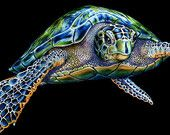 Sea Turtle Ink Drawing by TimJeffsArt on Etsy Sea Turtle Quilts, Sea Turtle Art, Sea Turtles, Animal Drawings, Pencil Drawings, Largest Sea Turtle, Turtle Images, Animal Coloring Pages, Color Pencil Art