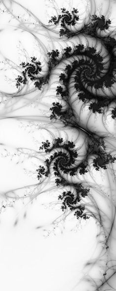Items similar to Fluid Dynamics, Matted Fractal Print on Etsy Caltech. One saving grace was that while the dynamics of smooth flows had matured the study or turbulence had not. fractal art: Fluid Dynamics via Etsy Fractal Design, Fractal Images, Fractal Art, White Art, Black And White, Fluid Dynamics, Foto Art, Sacred Geometry, Fractal Geometry