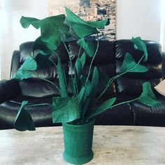 Crepe paper plant is a pot :) yes we do that too :) nit only flowers ; Paper Plants, Giant Paper Flowers, Crepe Paper