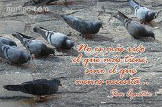 No es más rico el que más tiene, sino el que menos necesita, reflexión de San Agustín