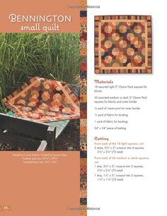 """Amazon.com: Schnibbles Times Two: Quilts from 5"""" or 10"""" Squares (That Patchwork Place) (9781564779861): Carrie Nelson: Books"""
