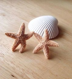 Aquamarine's Starfish Earrings - Natural Sea Star Studs - Cute - Adorable - Beach Boho - Romantic - Whimsical - Dreamy - Mermaid Collection. $38.00, via Etsy.