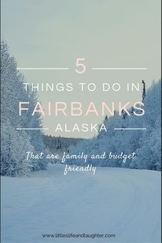 Awesome list of things to do in Fairbanks, Alaska that are family and budget friendly!