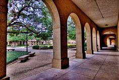 lsu quad. . .memories longer than the road that stretches out of here
