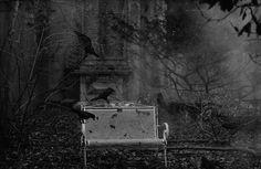 hauntingmidnight:    maybeghosts:    toughnight:    Peter Lindbergh