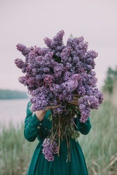 Lilac Flowers, Bunch Of Flowers, Beautiful Flowers, Lavender Blossoms, Holding Flowers, Flower Aesthetic, Arte Floral, Belle Photo, Planting Flowers