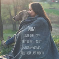 Dogs.  Once they love, they love steadily, unchangingly, till their last breath.