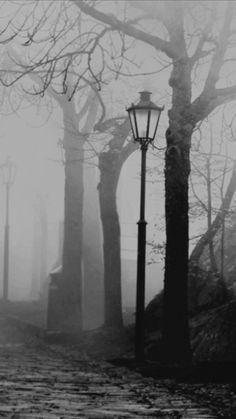 black and white Fantasy City, Dark Fantasy, Dark Photography, Black And White Photography, Beautiful Buildings, Beautiful Landscapes, Memes Arte, Victorian London, Black And White Aesthetic