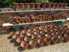 Large Quantity of Antique Terracotta Plant Pots 6889