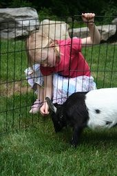 10 Great Things to do in Fairfield County this Spring www.ct.mommypoppins.com