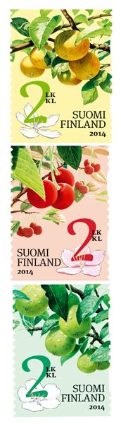 Pear, apple and cherry to appear on stamp rolls!  The 2014 edition of stamp rolls is decorated with fruit. The Fruit in the Garden stamps feature three delicious homegrown varieties: pear, apple and cherry. The designs, created by illustrator Ossi Hiekkala, also include depictions of the plants in flower. The graphic design is by Heikki Sallinen.   The fruit-themed stamps are a continuation of Hiekkala's Products of the Garden series, launched in March 2013 with a roll of stamps depicting a…