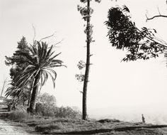 Robert Adams. Edge of San Timoteo Canyon, San Bernadino County, California. 1978