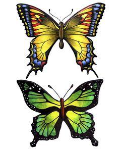 Swirlydoos: Forums / Images & Graphics / Butterflies- so beautiful!