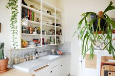 House Tour: A Cozy 300 Square Foot Studio in Oakland | Apartment Therapy