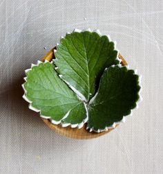 Leaf Arrangement