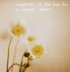 Every man that Ive ever fallen in love with was because he made me laugh