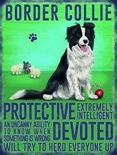 "Click visit site and Check out Best ""Border Collie"" T-shirts. This website is superb. Tip: You can search ""your name"" or ""your favorite shirts"" at search bar on the top."