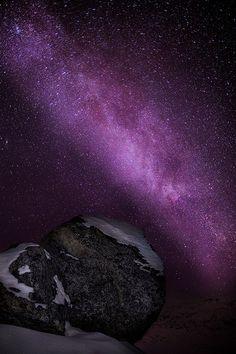 Space dust   #purple #nature