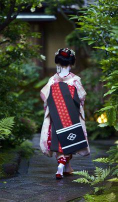 Maiko, apprentice geisha, Kyoto, Japan
