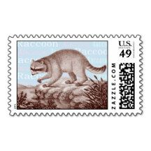 Racoon Postage Stamps - Blue Background