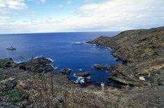 Jornal espanhol reabre polémica sobre as ilhas Selvagens - PÚBLICO