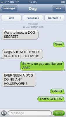 Funny Text Message Breakups 48 these 35 Texts From A Dog are Hilarious My Stomach Hurts Funny Shit, Funny Dog Texts, Funny Text Fails, Cute Texts, Funny Text Messages, The Funny, Funny Jokes, Funny Stuff, Hilarious Texts