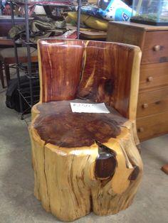 1000 Images About Cedar Stump Ideas On Pinterest Tree