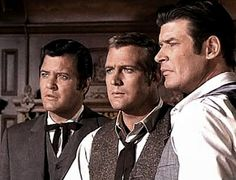 THE  BARKLEY  BROTHERS  ON  THE  BIG  VALLEY   ~ JARROD ,  HEATH  ,  NICK  .    RICHARD  LONG  ,  LEE  MAJORS  AND  PETER  BRECK