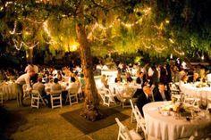 Dica para decorar árvores para a noite da festa e cerimônia do casamento