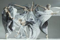 Fashion Ballet - The Art of Movement