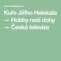 Kuře Jiřího Helekala — Hobby naší doby — Česká televize