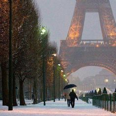 Snowy Paris, snowflakes and fairy lights, and Christmas and your dreams come true. Winter in Paris, France. Paris Travel, France Travel, Paris France, Places To Travel, Places To See, Travel Destinations, Torre Eiffel Paris, Christmas In Paris, Christmas Images