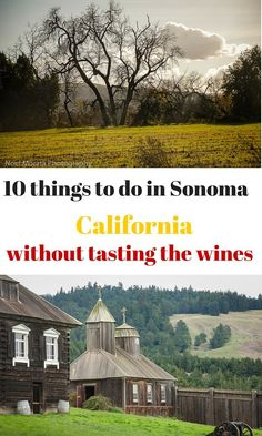 10 wonderful places and areas to visit around Sonoma wine country in California, that don't require you to taste any of the wines. These are fun places to discover with kids and all the way to senior visitors to the region. Napa Sonoma, Sonoma Valley, Napa Valley, Sonoma County, Sonoma Wineries, Sonoma California, California Travel, Northern California, Santa Rosa California